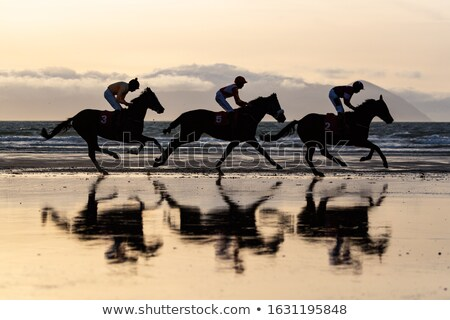 silhouet · paard · strand · zonsondergang · sport · natuur - stockfoto © morrbyte