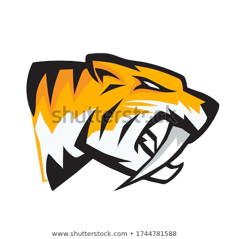 Stock foto: Panther Saber Tooth Cat Mascot Head Vector Graphic