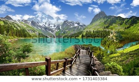 Panorámakép kilátás hegy felhők erdő természet Stock fotó © elly_l