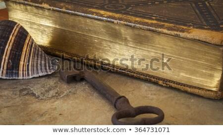 книга · ключевые · блокировка · белый · 3d · визуализации · металл - Сток-фото © pinkblue