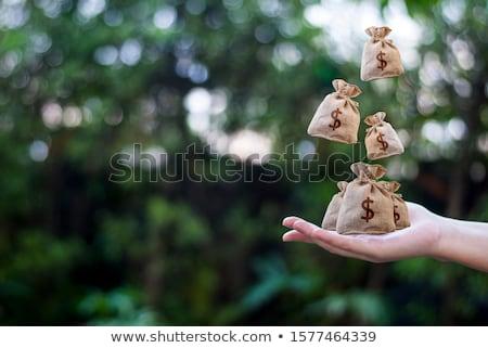 ストックフォト: お金 · 計画 · コイン · 文書 · オフィス · 背景