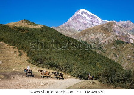Snow-capped mountains with a rider on the horseback Stock photo © bbbar