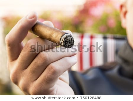 cigar perspective Stock photo © taviphoto
