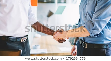 businessmen exchanging views during meeting stock photo © photography33