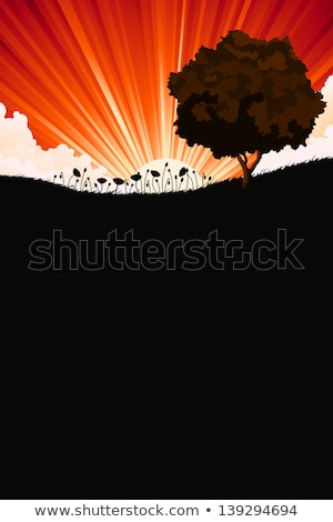 Nature sunrize landscape with tree and flowers Stock photo © WaD