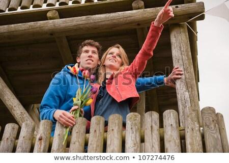 çift hollanda gözlem kulübe bayrak Stok fotoğraf © ivonnewierink