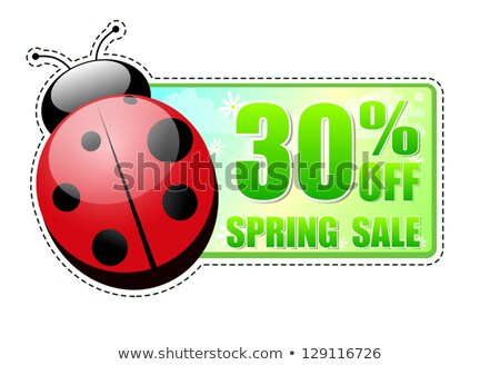 primavera · oferecer · verde · etiqueta · joaninha · bandeira - foto stock © marinini
