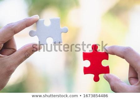 verloren · puzzel · stuk · 3d · illustration · Zoek · spel - stockfoto © 4designersart