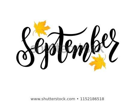 September Typography Stock photo © maxmitzu