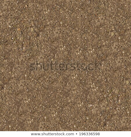 Seamless Texture of Steppe Soil. Stock photo © tashatuvango