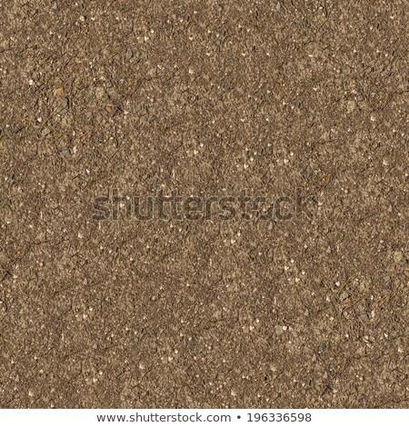seamless texture of steppe soil stock photo © tashatuvango