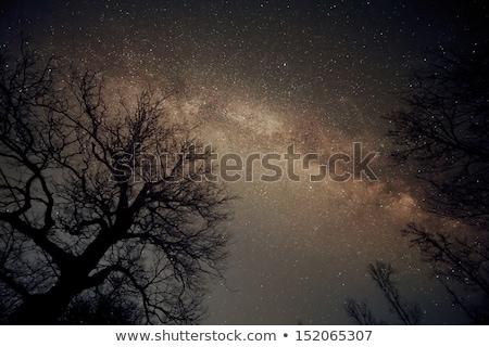 Uniwersalny mleczny sposób galaktyki tekstury przestrzeni Zdjęcia stock © leungchopan