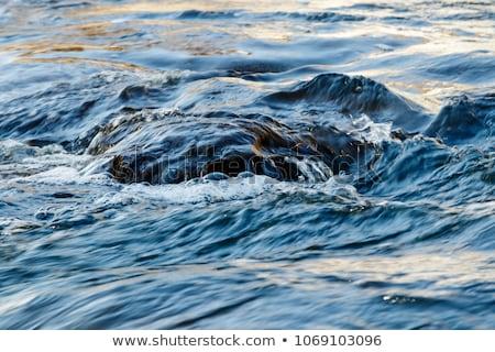 Stream flow between mossy rocks to lake Stock photo © vetdoctor