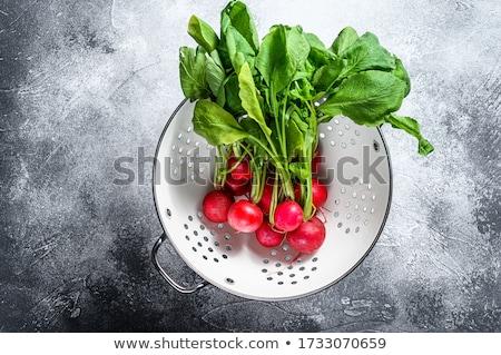 Vers radijs witte vruchten groene Stockfoto © bdspn