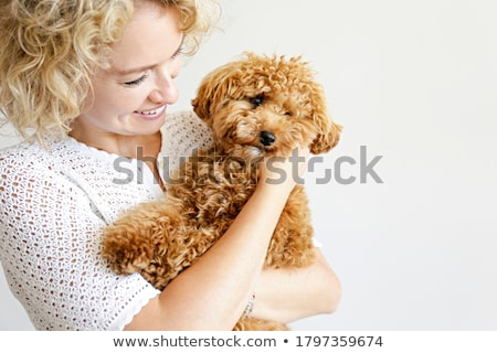 holding puppy Stock photo © willeecole