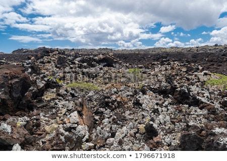 Taşlar volkanik vermek güzel yapı Stok fotoğraf © meinzahn