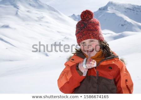 Akasztás el örökzöld bokor napfény hó Stock fotó © chrisbradshaw