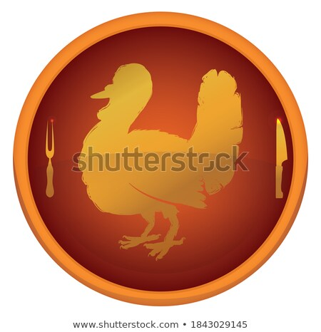 round buttons with silhouettes of poultry stock photo © mayboro