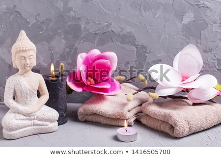 Magnolia Candle Flower Stock photo © rghenry