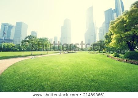 Gebouwen groen gras veld architectuur hemel gras Stockfoto © cherezoff