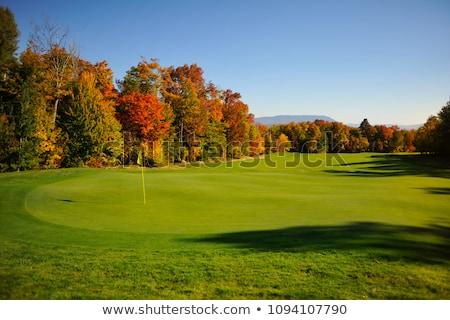 Golf sahası sonbahar manzara detay çim golf Stok fotoğraf © CaptureLight