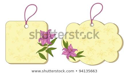 Shopping Sign Square Vector Pink Icon Design Set 2 Stock photo © rizwanali3d