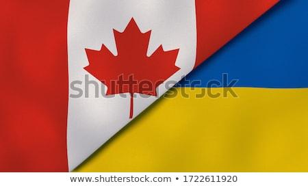 Kanada Ukrajna zászlók vektor kép puzzle Stock fotó © Istanbul2009