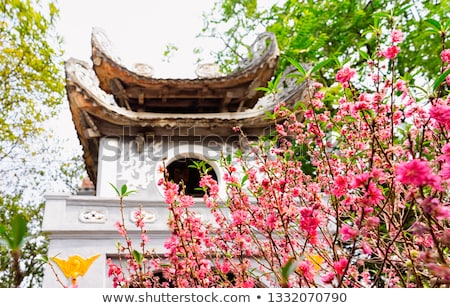 Pagoda Tower at a Temple in Southeast Asia Stock photo © pzaxe
