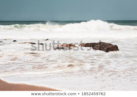 Stone in the sand and the wave behind it. Stock photo © vapi