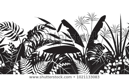 Fern frond silhouettes seamless pattern. Vector illustration Stock photo © gladiolus