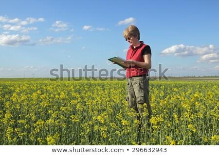 Female farmer in blooming rapeseed field Stock photo © stevanovicigor