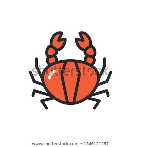 Crabe ligne icône web mobiles Photo stock © RAStudio