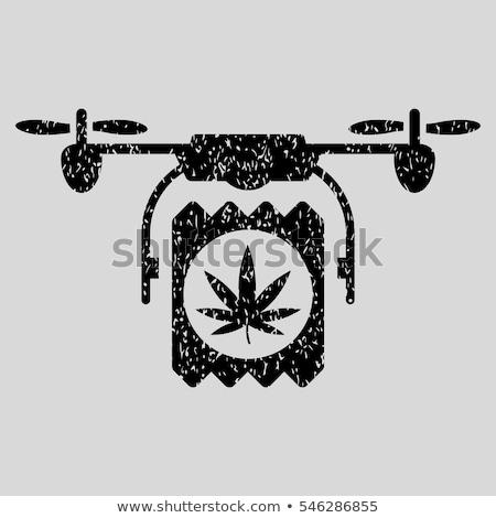 cannabis leaf grungy texture design stamps Stock photo © Zuzuan