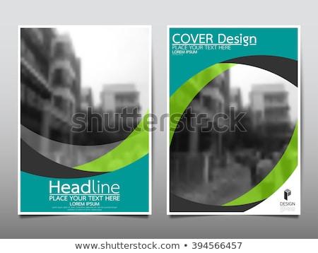 Yeşil iş broşür uçan dizayn düzen Stok fotoğraf © ganpanjanee