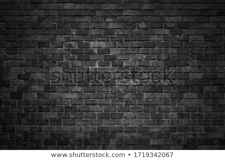 Rustikal Ziegel Muster Bodenbelag Oberfläche Textur Stock foto © stevanovicigor