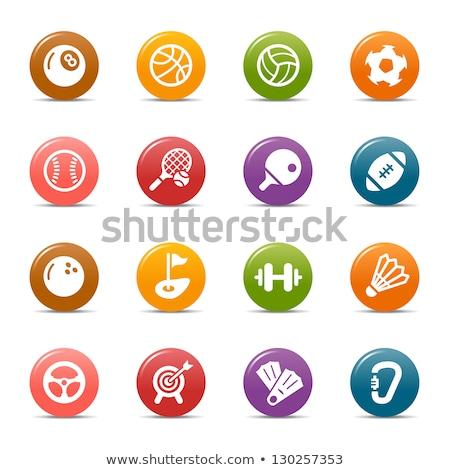 Sport icon for handball in blue Stock photo © bluering