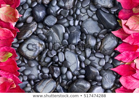 black rocks bordered left and right by red leaves stock photo © ozgur