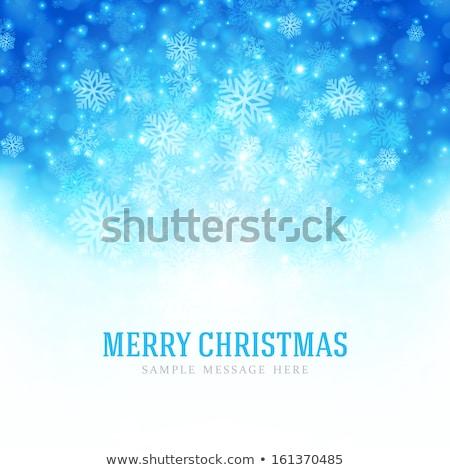 зима · синий · прибыль · на · акцию · 10 · вектора - Сток-фото © beholdereye
