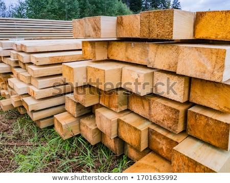 Tarcica przemysłu drewna lasu zimą niebieski Zdjęcia stock © simazoran