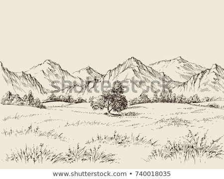 Prairie landscape with mountains panorama Stock photo © TasiPas