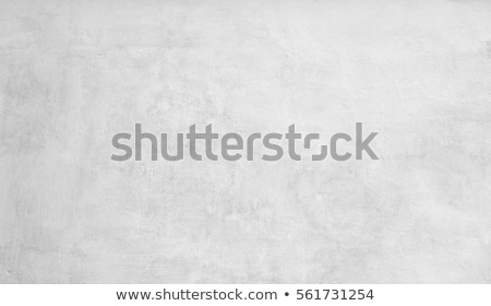 Abstract grunge white texture of cement plaster wall Stock photo © stevanovicigor