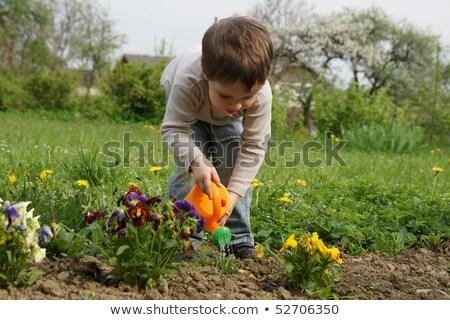 Jongen voorzichtig planten gazon voorjaar kinderen Stockfoto © Pozn