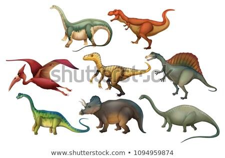 набор Динозавры иллюстрация животного рисунок фотография Сток-фото © bluering