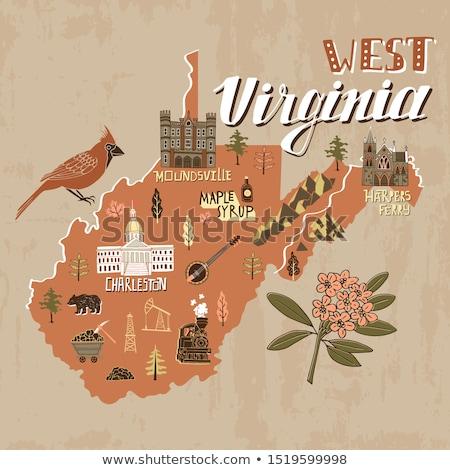 Rajz Nyugat-Virginia illusztráció mosolyog grafikus Amerika Stock fotó © cthoman