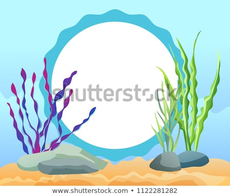 Funny Cartoon Oval Photo Frame with Sea Weed Card Stock photo © robuart