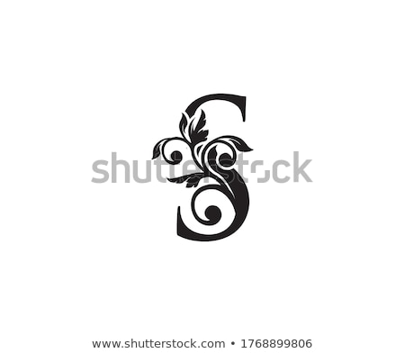 letter s calligraphy vector icon logo Stock photo © blaskorizov