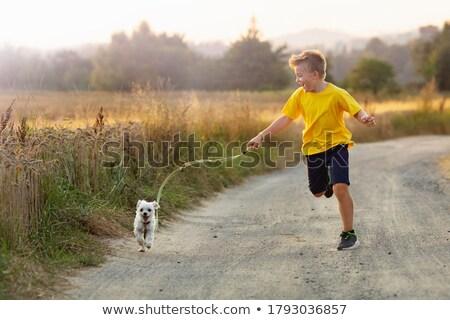 macska · kutya · éjszaka · arc · szeretet · orvos - stock fotó © bluering