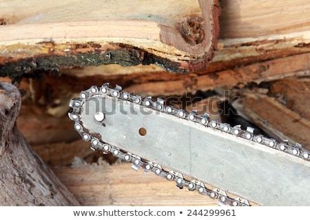 lenha · grande · combustível · materialismo · inverno - foto stock © romvo