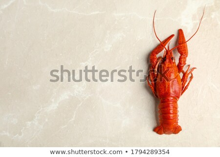 Uno cocido cangrejo gris mesa Foto stock © dashapetrenko