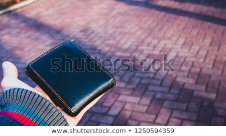 Giving back passport Stock photo © pressmaster